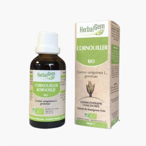 Gemmothérapie Cornouiller BIO herbalgem