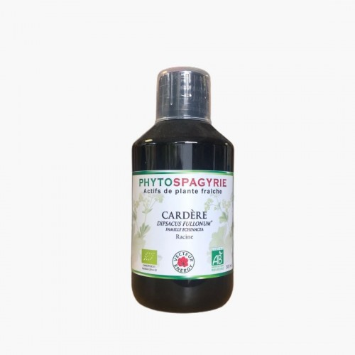 Cardère phytospagyrie 300ml