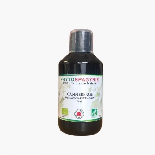 Canneberge Phytospagyrie Phytothérapie Vecteur Energy