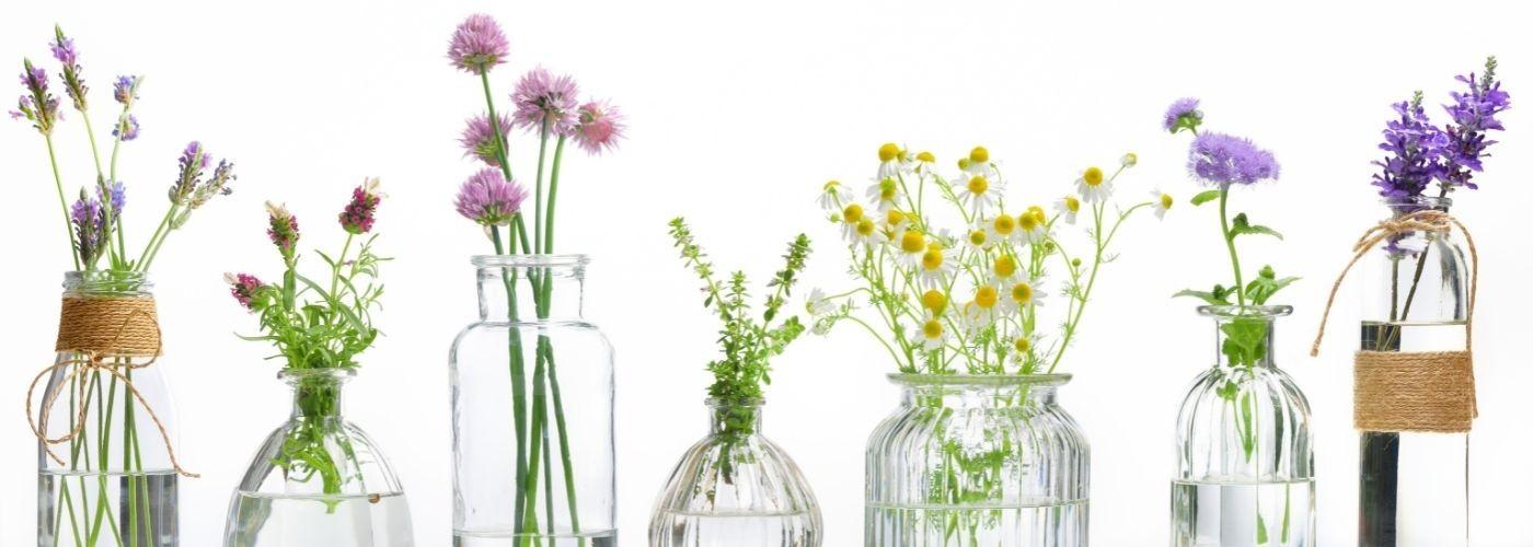 Hydrolats et eaux florales - Aroma & Cie